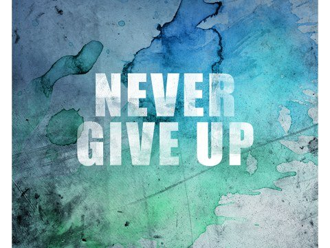 Never Give Up immagine
